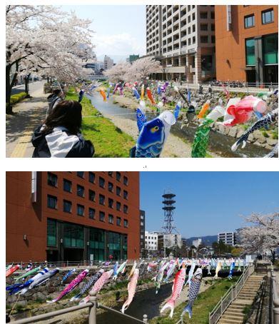 【松本】春のウォーキング
