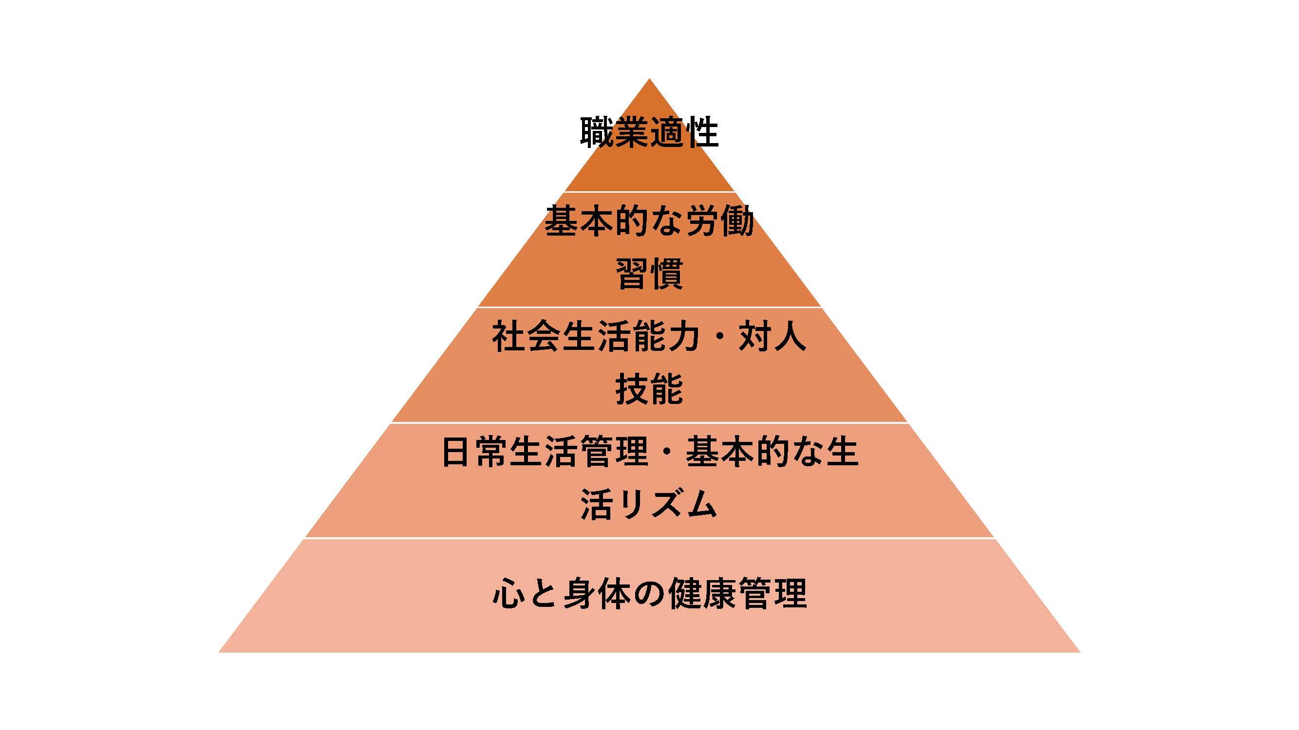 【横須賀】20210203(職業準備性ピラミッド) (1)