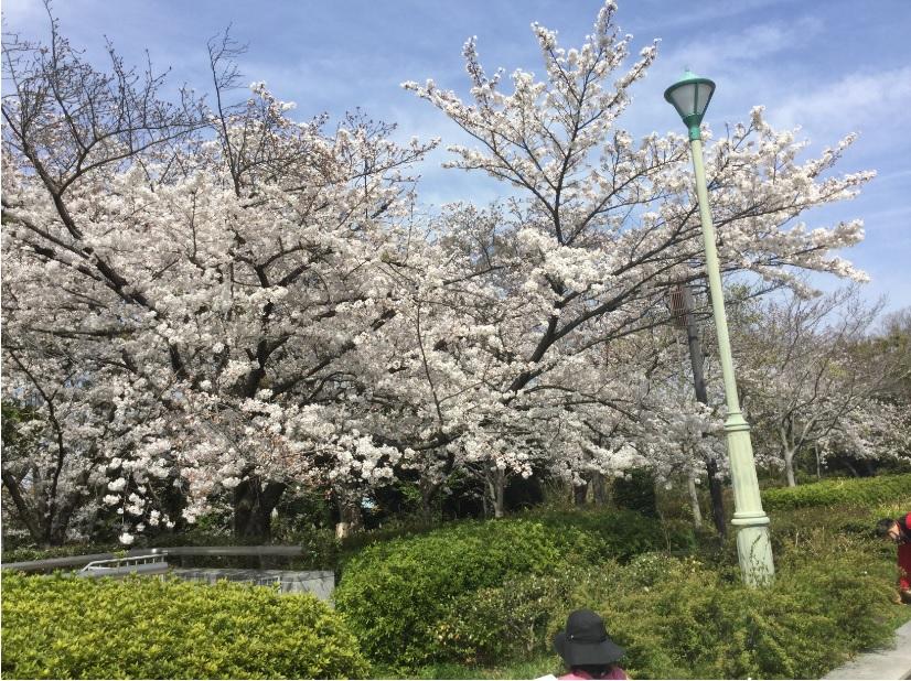 大阪天王寺センターIMG_0391